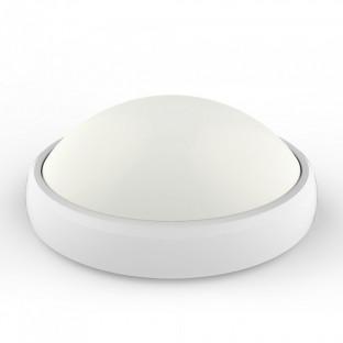LED Овал Плафониера- 12W, Бяло Тяло, Външен Монтаж, IP54, Бяла Светлина