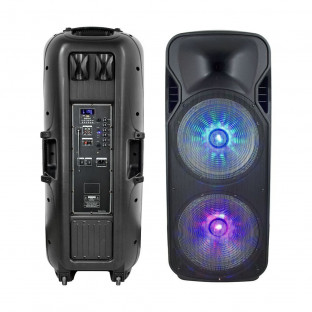 Portable Speaker - 150W, wired and wireless microphone included