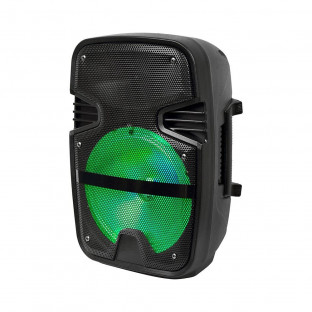 Portable speaker - 15W, wired microphone included, RGB LED lights